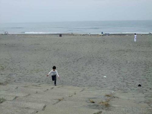 仙台沿岸津波12.JPG
